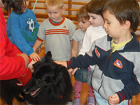 Terápiás kutya a Patakparti Óvodában