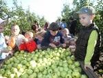 Az almás kertben