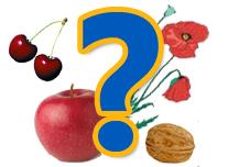 Találós kérdések: növényekről